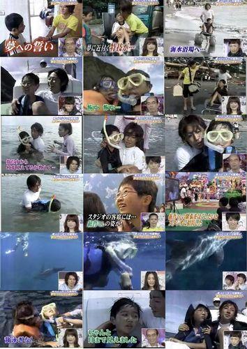 Aiba's task